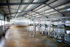 Csarnoképítés: Az ideális mezőgazdasági épület acélszerkezetből készül!